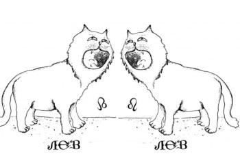 Бизнес-совместимость Льва и Льва