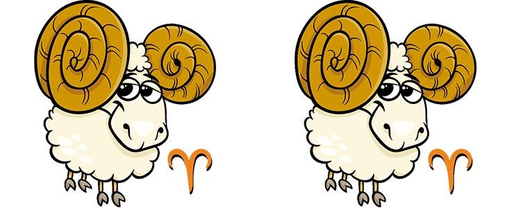 Овен мужчина и овен женщина: совместимость в любви и браке
