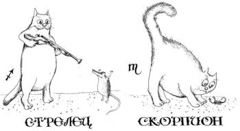 Юноша-Скорпион, девушка-Стрелец