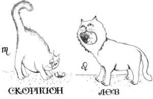 Мужчина-Лев и Женщина-Скорпион