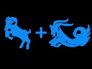 Женщина-Козерог и Мужчина-Овен совместимость