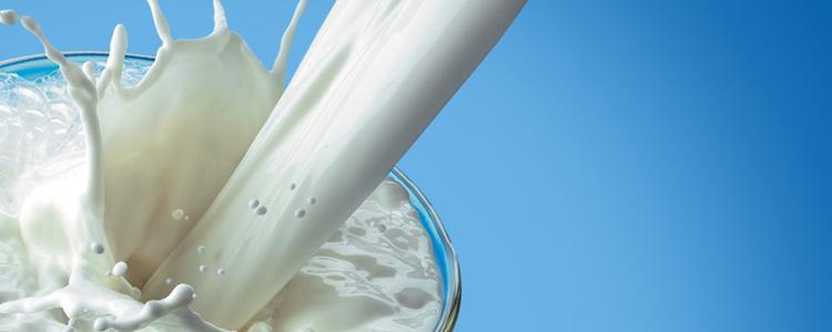 Кому не подходят диеты на молоке?