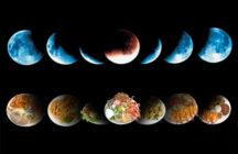 Как питаться на убывающую луну?