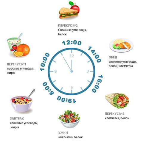 Чем питаться в течение дня