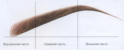 Правильный выбор формы бровей