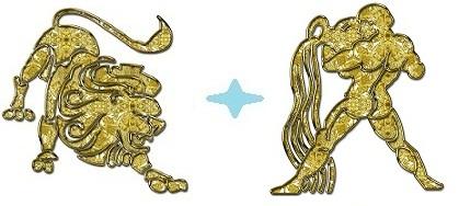 Мужчина-Лев и женщина-Водолей